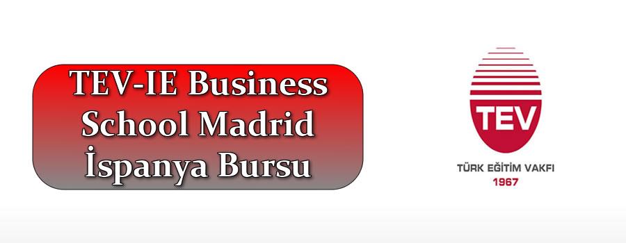 TEV-IE Business School Madrid İspanya Bursu