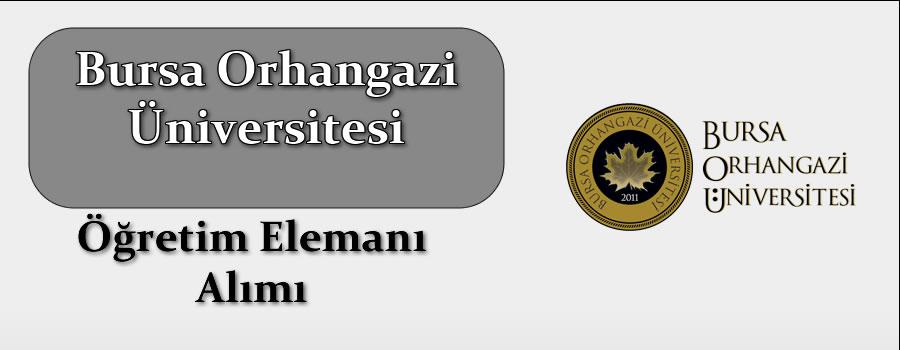 Bursa Orhangazi Üniversitesi Öğretim Elemanı Alımı